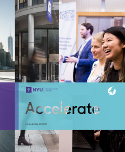 NYU Entrepreneurial Institute Annual Report 2018