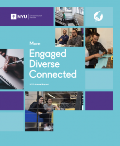 NYU Entrepreneurial Institute Annual Report 2017
