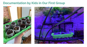Photo of Grow Together's gardening product